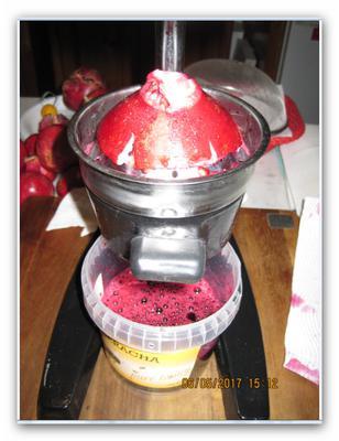 raw pomegranate j